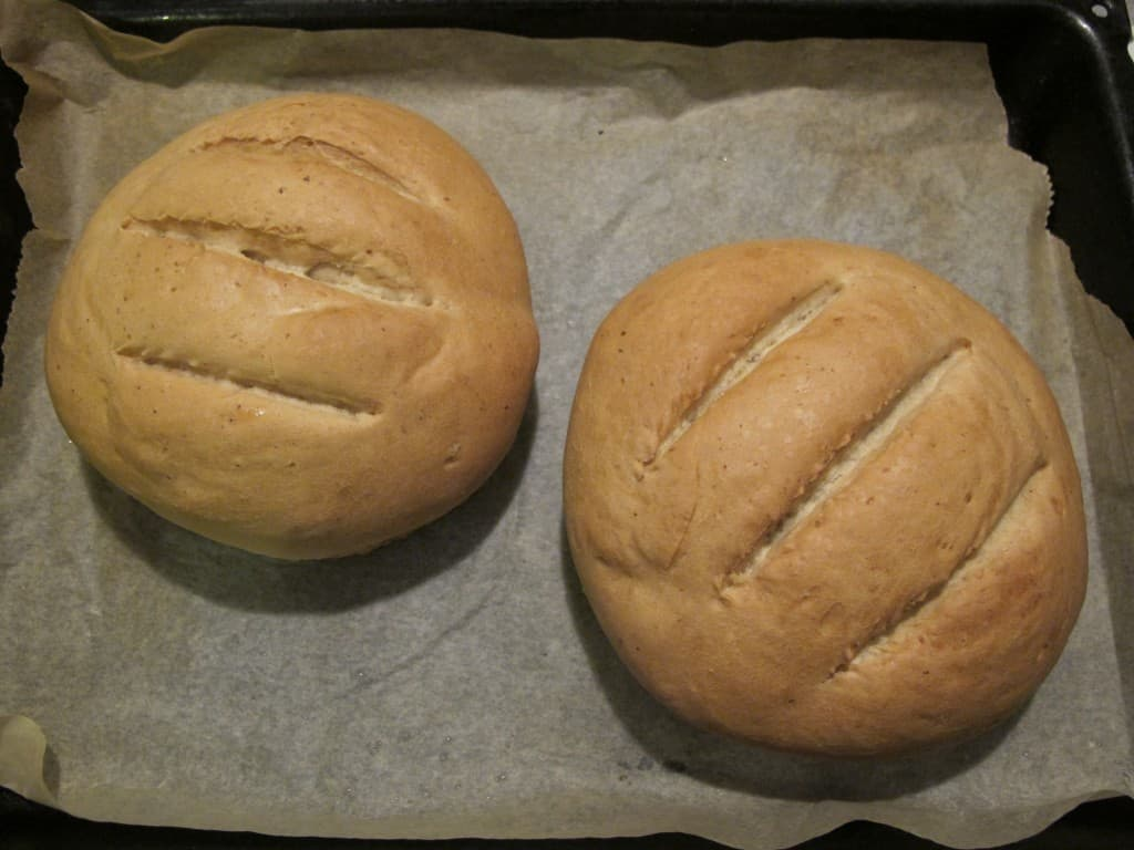Spelt bread loaves fresh out of the oven