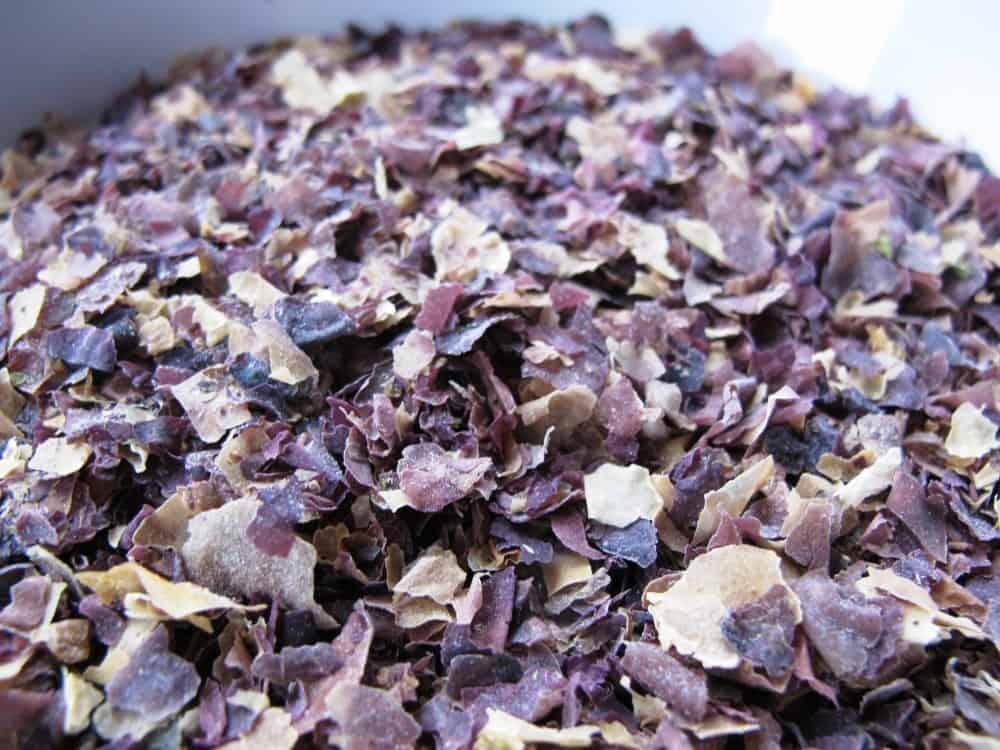 Seaweed Bread Recipes (Dulse & Kelp)