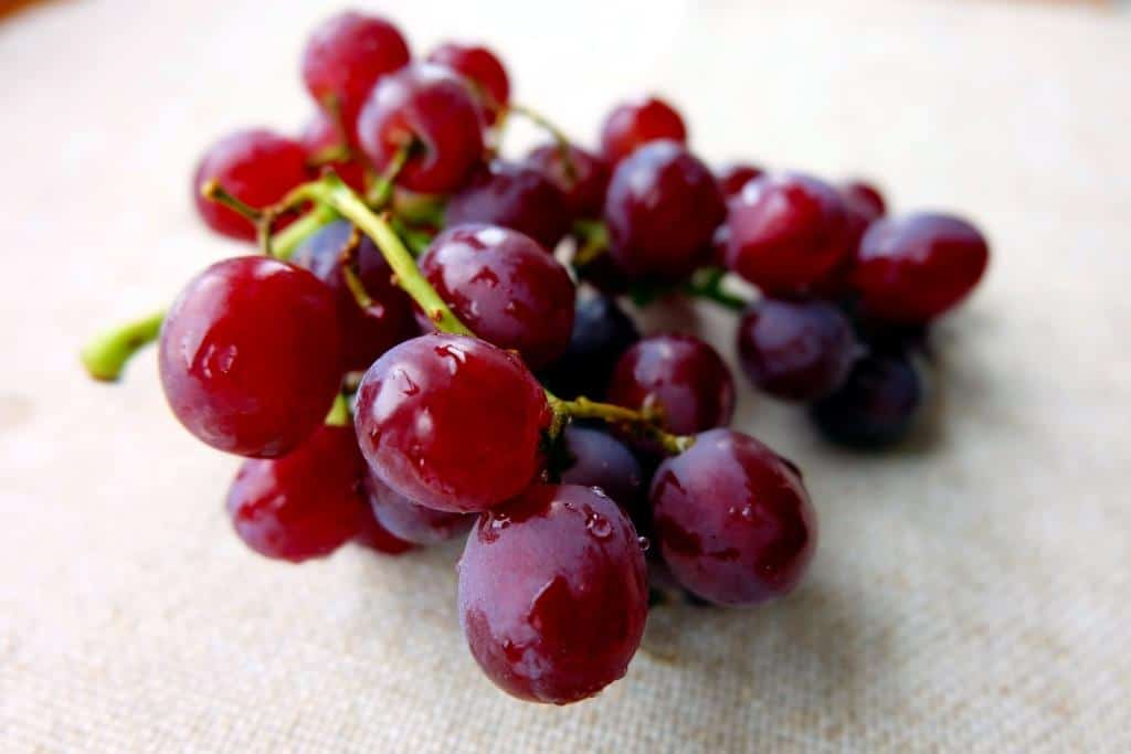 Sweet red seedless grapes
