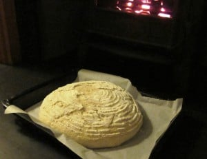 Sourdough bread in the proofing basket
