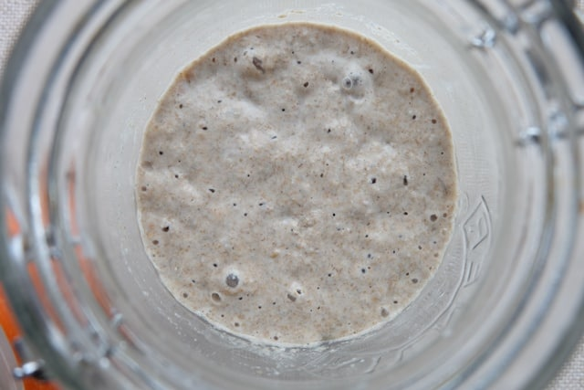 Rye sourdough starter recipe