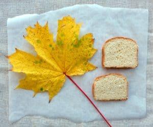Zwieback Einback First Bake