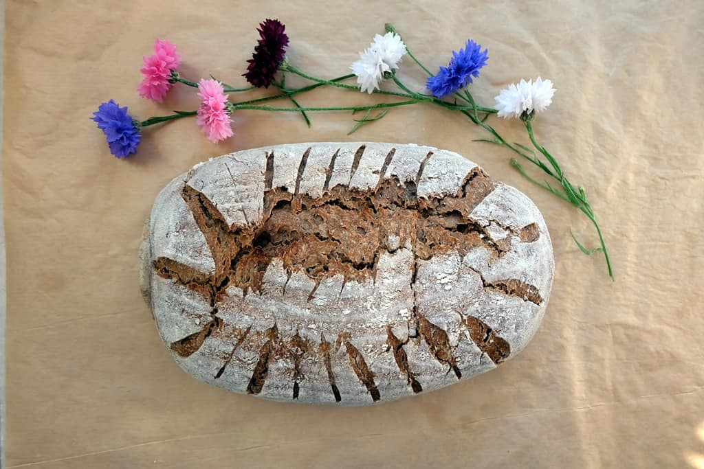 Grape seed flour bread