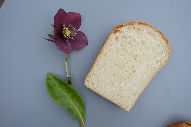 Japanese milk bread crumb shokupan