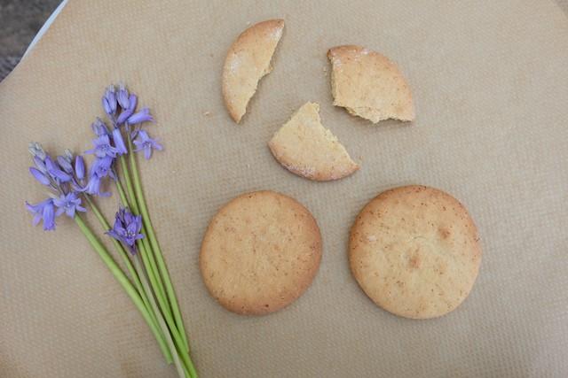Tapioca biscuits