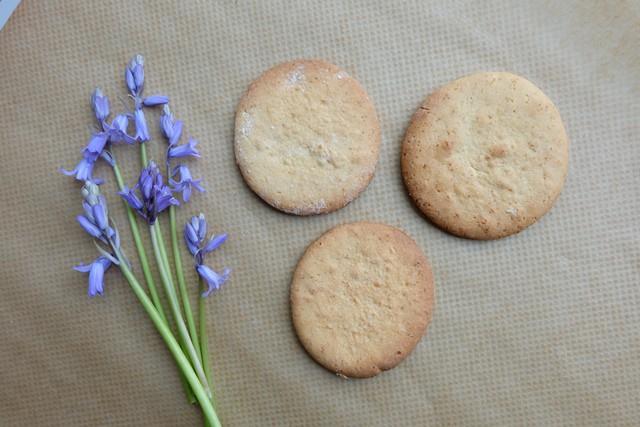 Tapioca flour biscuits